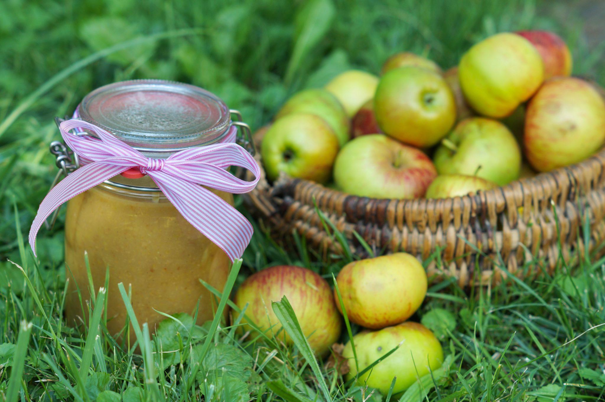 Zuckerfreies selbstgerechtes Apfelmus