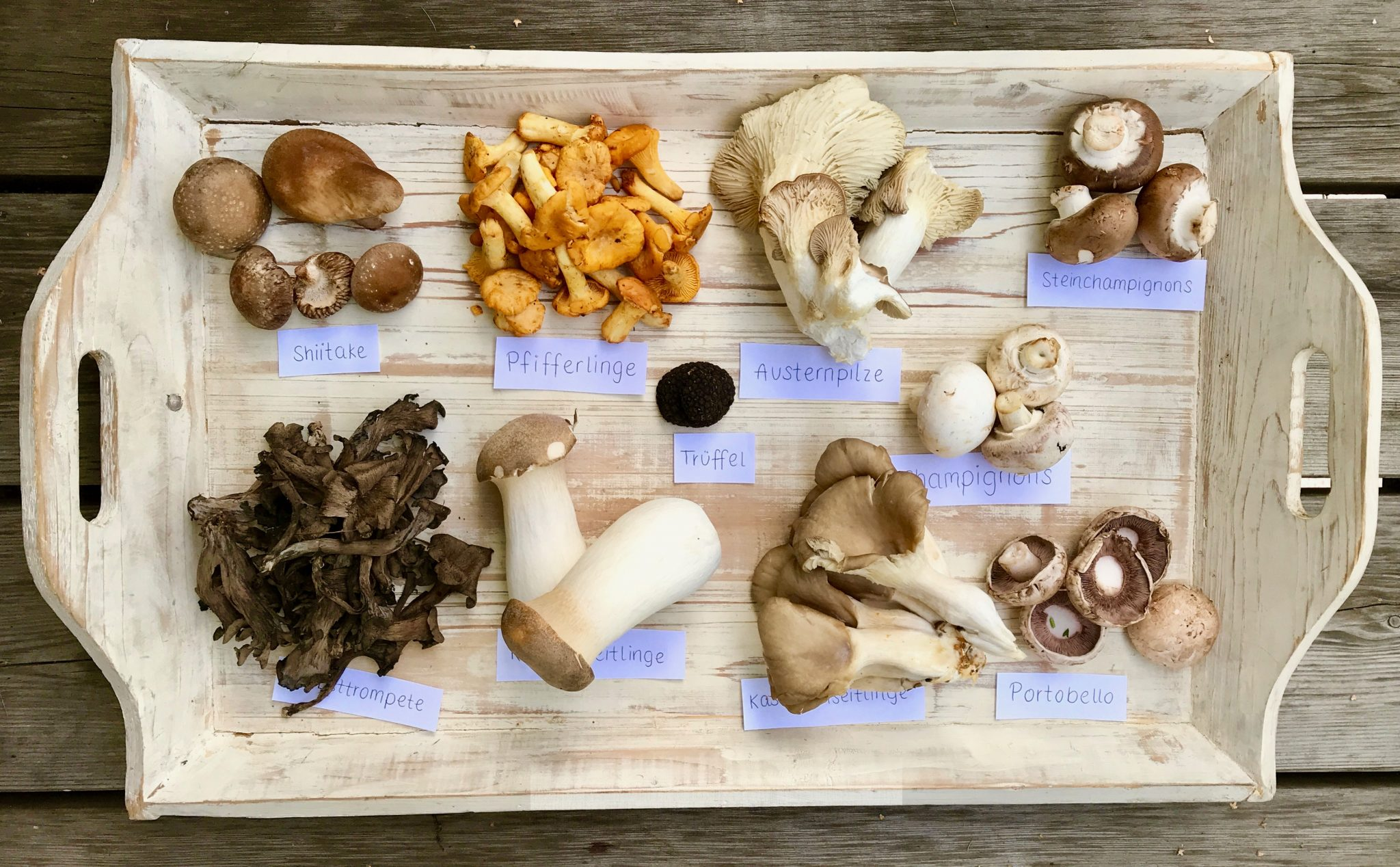 Pilze auf weißem Tablett